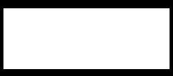 logo-finto-white