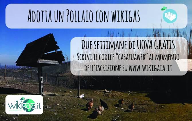 Offerta Novembre - Wiki Gaia 1-SCONTO-WIKI-GAIA-SITO