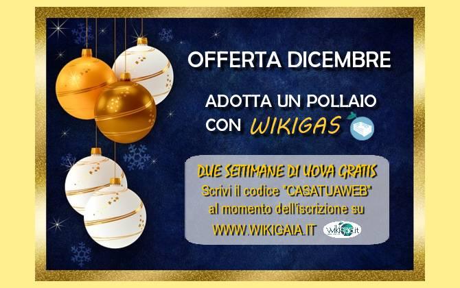 Offerta Dicembre - Wiki Gaia SCONTO-WIKIGAIA-SITO