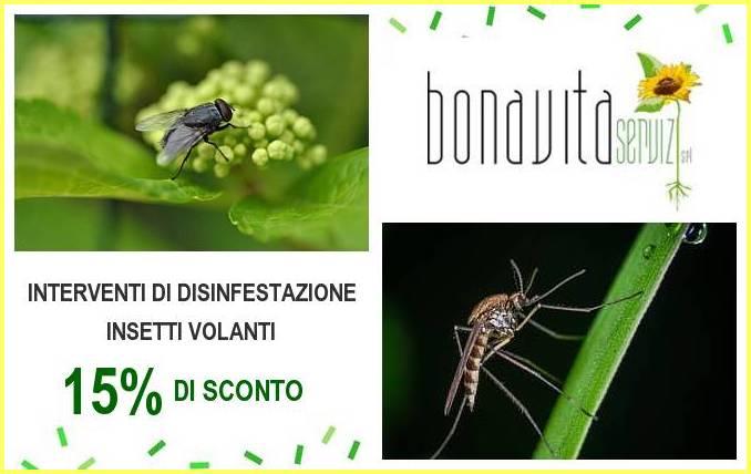 Disinfestazione insetti volanti