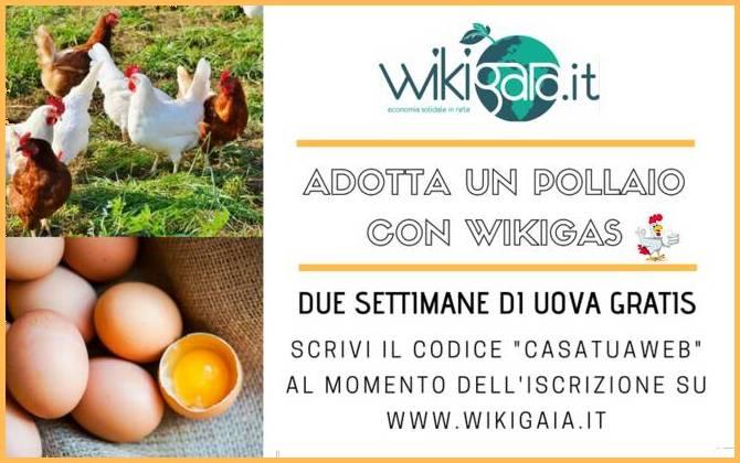 Offerta Luglio - Wiki Gaia SCONTO-WIKIGAIA-SITO