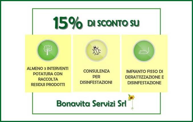 Consulenza e servizi vari