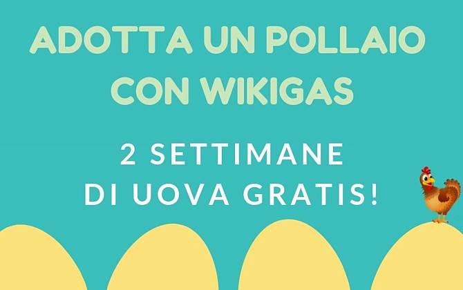 Offerta Settembre - Wiki Gaia WIKIGAIA-SITO
