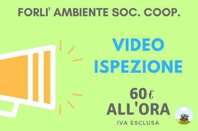 Offerta Ottobre- Forlì Ambiente Soc. Coop. FORLIAMBIENTE-SITO