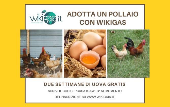 Offerta Ottobre - Wiki Gaia WIKI-GAIA-SITO