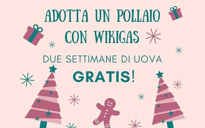 Offerta Dicembre - Wiki Gaia WIKIGAIA-SITO